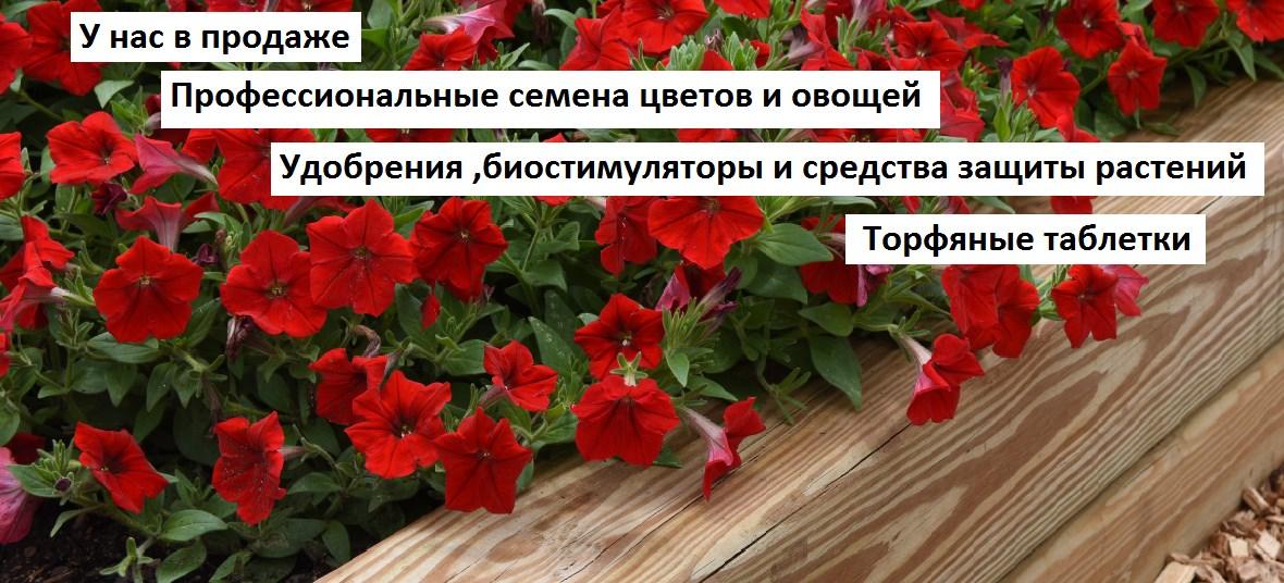 Магазин Профсемян Цветов