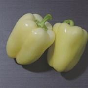 Перец сладкий Сильвер Стар F1 - 5 шт(профсемена)