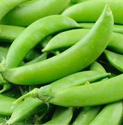 Горох овощной Эверест-10гр (Ц/П)