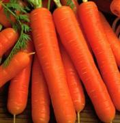 Морковь Берликум Роял - 1гр (профсемена)