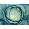 Капуста белокочанная Альбатрос F1 -20 шт (профсемена) - фото 6540